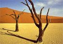 sossusvlei, Namībija, namībijas tuksnesis