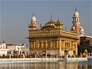 Amritsara, zelta templis, Indija