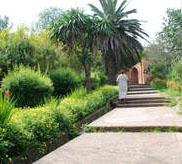 Marokas dārzi
