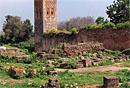 Chellah Garden, Maroka