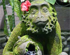 ubudas mērkaķu mežs Bali