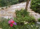 jamaikas dārzi