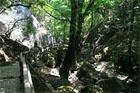 taureņu ieleja, Grieķijas salas,