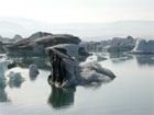 Ledāju lagūna