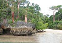 Madagaskara
